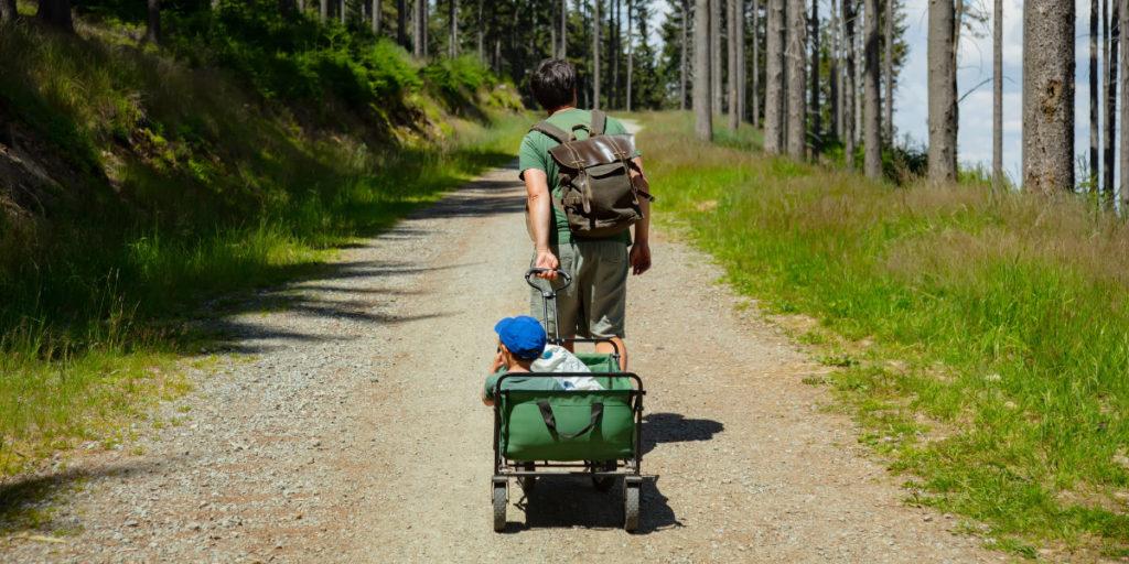 Ein faltbarer Bollerwagen eignet sich auch für einen Waldausflug
