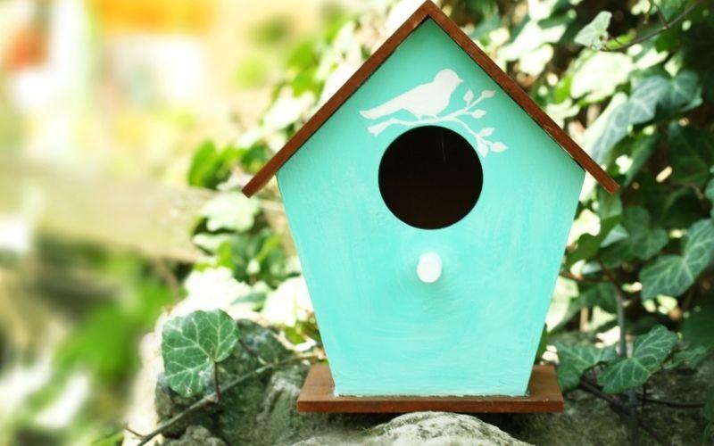 Herbst Aktivität mit Kindern Vogelhaus bauen