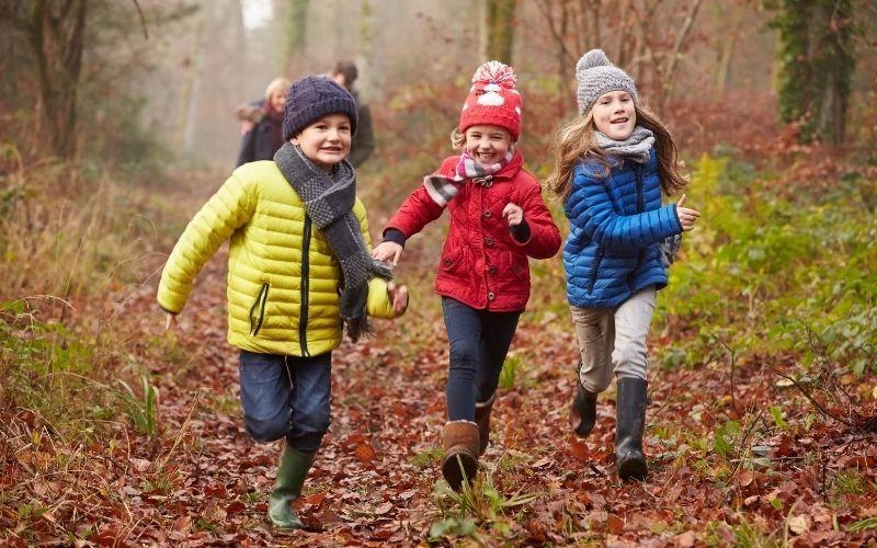 Herbst Aktivität mit Kindern Waldausflug